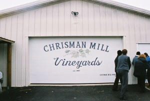 chrisman-mills-vineyard