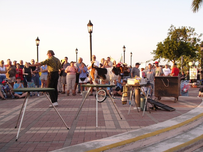 Sunset Party Key West